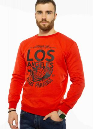 Свитшот мужской Los Angeles 205P006