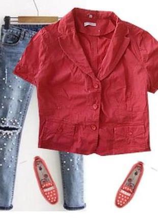 Стрейчевый катоновый пиджак большой размер