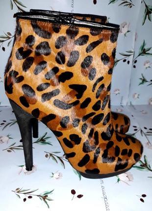 Леопардовые полусапожки ботильоны на высоком каблуке asos, 37 ...