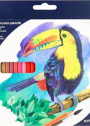Цветные акварельные карандаши 'Kite' на 24 цвета