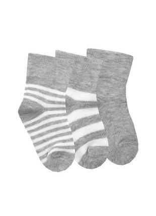 Комплект носков дюна для новорожденных из 3 пар 11-14 размер 8...