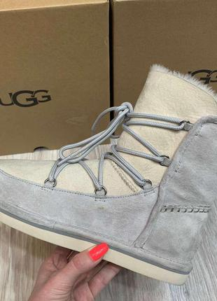 Угги женские ботинки снегоходы серые замш шнуровка ugg austral...