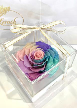Подарок жене Нежный Радужный стабилизированный бутон живой розы