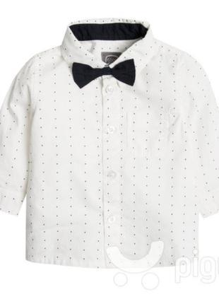Рубашка с бабочкой для мальчика cool club