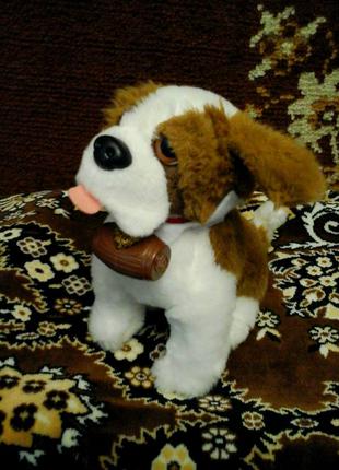 Мягкая игрушка собачка симбернар спасатель с бочкой с Европы