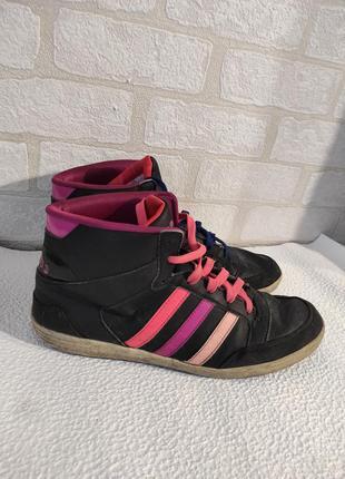 Стильные, брендовые, яркие кроссовки adidas neo label