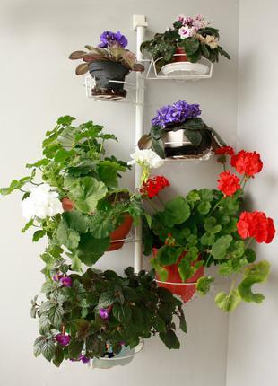 Настенная подставка для цветов, для орхидеи