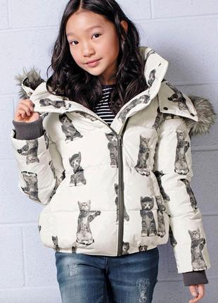 Куртка модная, принт 🐈 для девочки next весна размер 6 лет