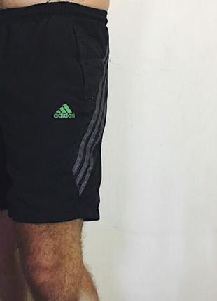 Мужские шорты adidas climalite