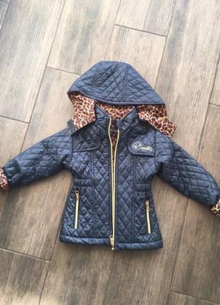 Куртка осенняя Cavalli на 2 года