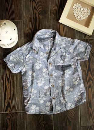 Летняя хлопковая рубашка с коротким рукавом и тропическим принтом
