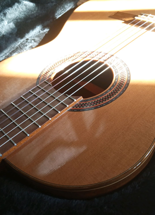Paco Castillo классическая концертная гитара + кейс + подставка