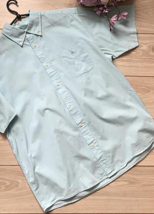 Рубашка с коротким рукавом l