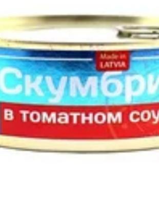 Скумбрия масло и томат