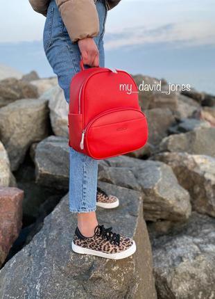 Новинка!!! женский рюкзак david jones.