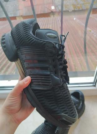 Кросівки adidas climacool