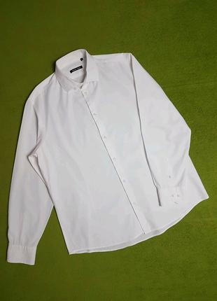 Рубашка сорочка с длинным рукавом, 52-54, XXL, Gregory Arber