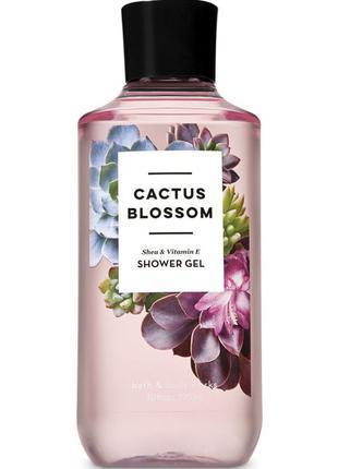 Гель для душа Bath and Body Works Cactus Blossom Shower Gel