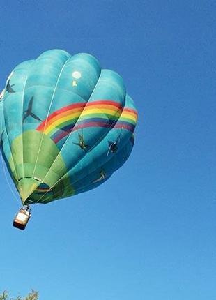 Полет на воздушном шаре Птички арендовать воздушный шар