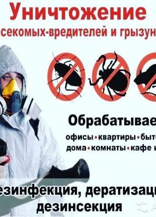 Профессиональное уничтожение тараканов, клопов и прочих насекомых