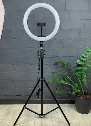 АКЦИЯ!! RGB 33 см Селфи-лампа Led кольцо + штатив-трипод 210 см