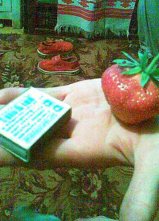 Клубника крупная (розетка с открытой корневой) 10 грн