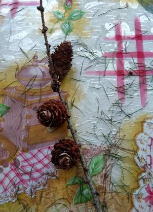 Гілочки для декору з мініатюрними шишками
