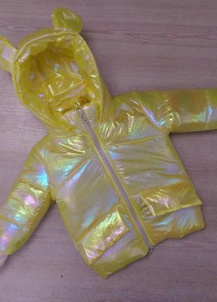 Куртка демисезонная ушки радуга