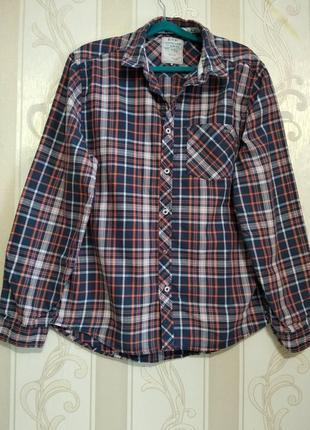 Рубашка , esp, 100% cotton