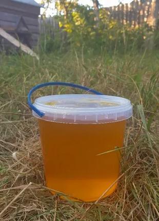 Продаємо мед з власної пасіки урожай 2020