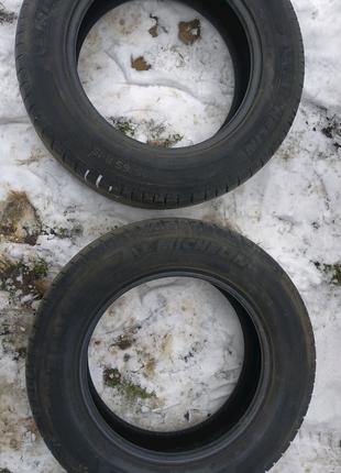 Дві шини літні Michelin R15 195/65 (0712)