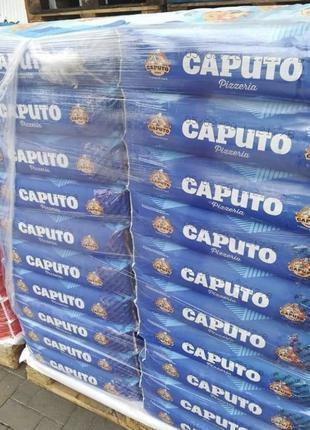 Італійське борошно Caputo 25кг