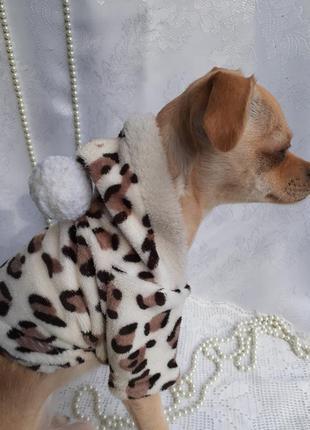 Кофта с капюшоном для маленькой собаки щенка леопардовая с буб...