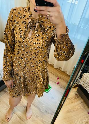 C&A плаття