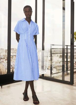 Нова  котонова сукня плаття Zara
