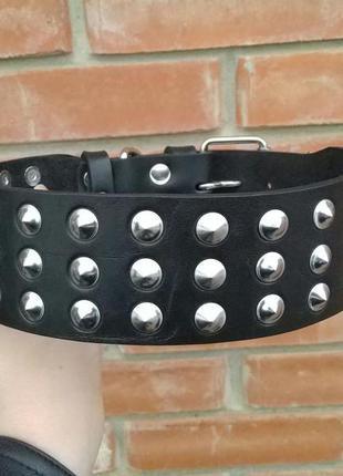 Кожаный ошейник для собаки с маленькими шипами черный