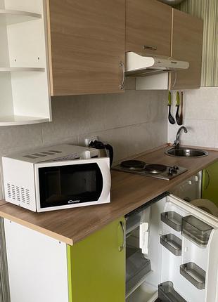 Аренда смарт квартиры в ЖК Птахи