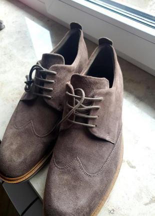 Туфлі чоловічі нові Ecco