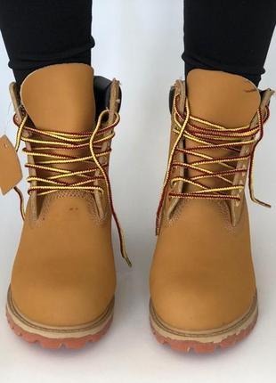 Рыжие ботинки на шнурках