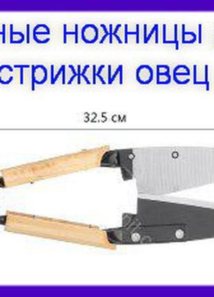 Ручные ножницы для стрижки овец.
