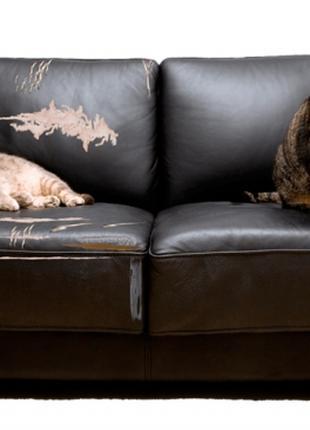 Услуги по перетяжке мебели