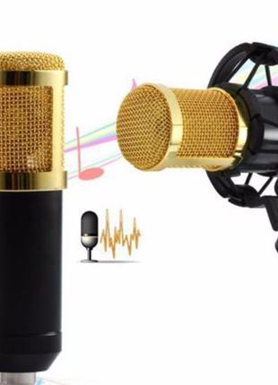 Микрофон студийный профессиональный M-800U