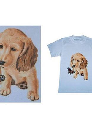 Роспись футболок, одежды, ткани на заказ.
