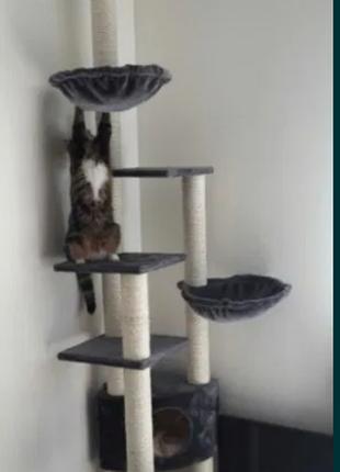 Когтеточка. Ігровий комплекс для кота. Дерево, Будиночок для кота