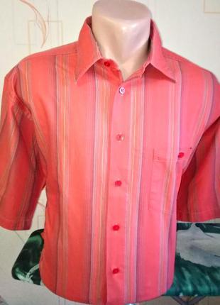 Рубашка шведка casa moda