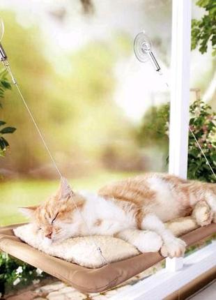 Оконная лежанка для кота. Полка. Кровать. Cat bed