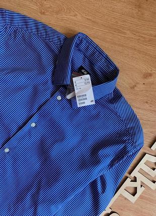 Синяя классическая рубашка в белую полоску h&m