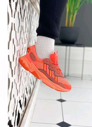 "Кроссовки Adidas Ozweego ""Orange"""