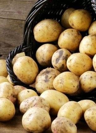 Доставка картошки(овощей) на дом