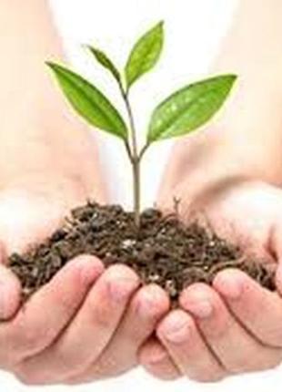 Засоби захисту рослин Средства защити растений ЗЗР не дорого